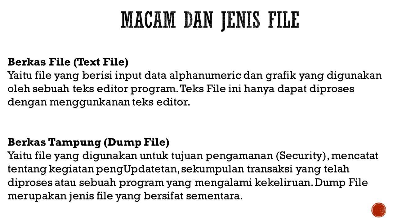 Macam dan Jenis File Berkas File (Text File)