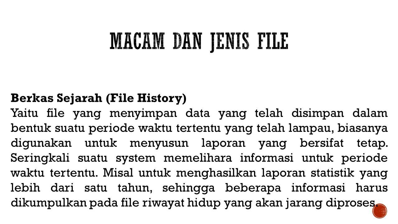 Macam dan Jenis File Berkas Sejarah (File History)