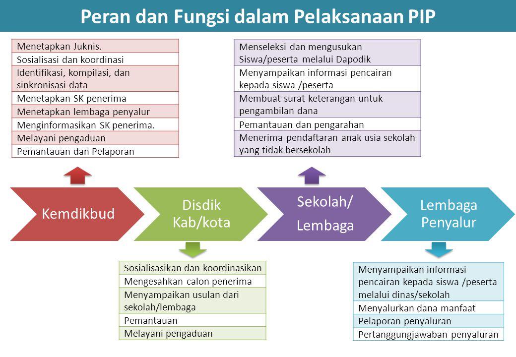 Peran dan Fungsi dalam Pelaksanaan PIP