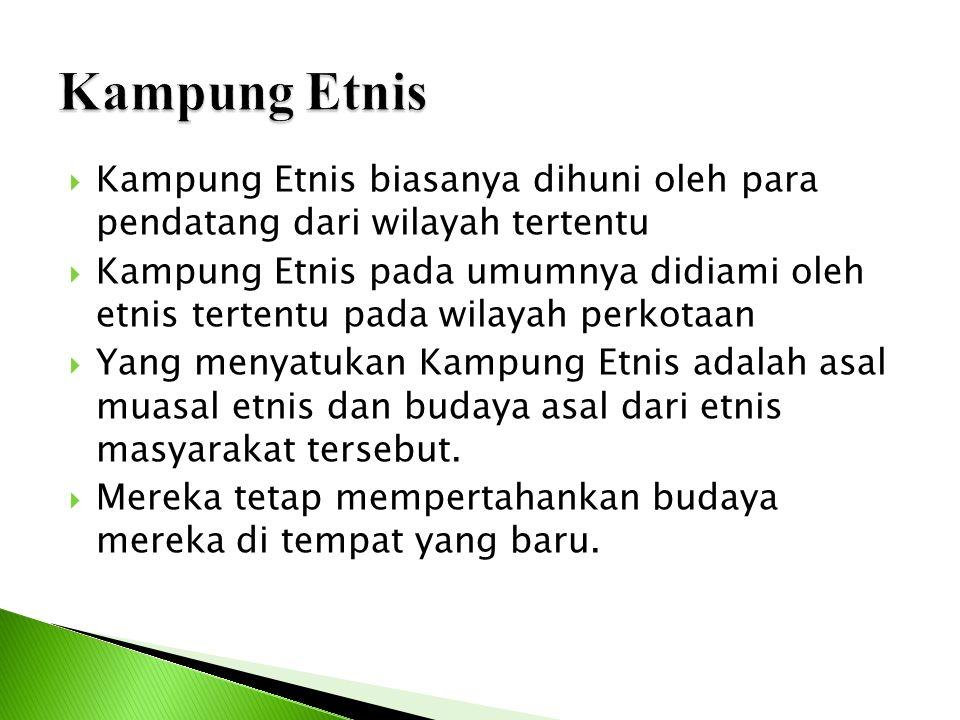 Kampung Etnis Kampung Etnis biasanya dihuni oleh para pendatang dari wilayah tertentu.