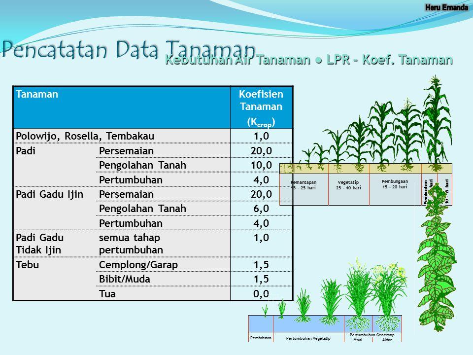Pertumbuhan Vegetatip Pertumbuhan Generatip