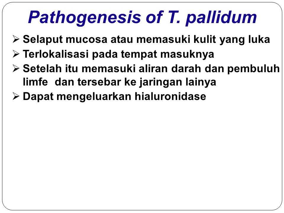 Pathogenesis of T. pallidum