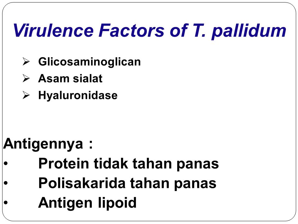 Virulence Factors of T. pallidum