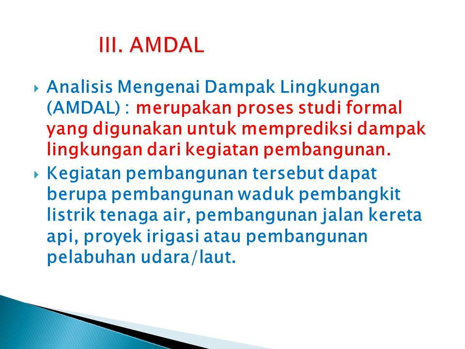 III. AMDAL