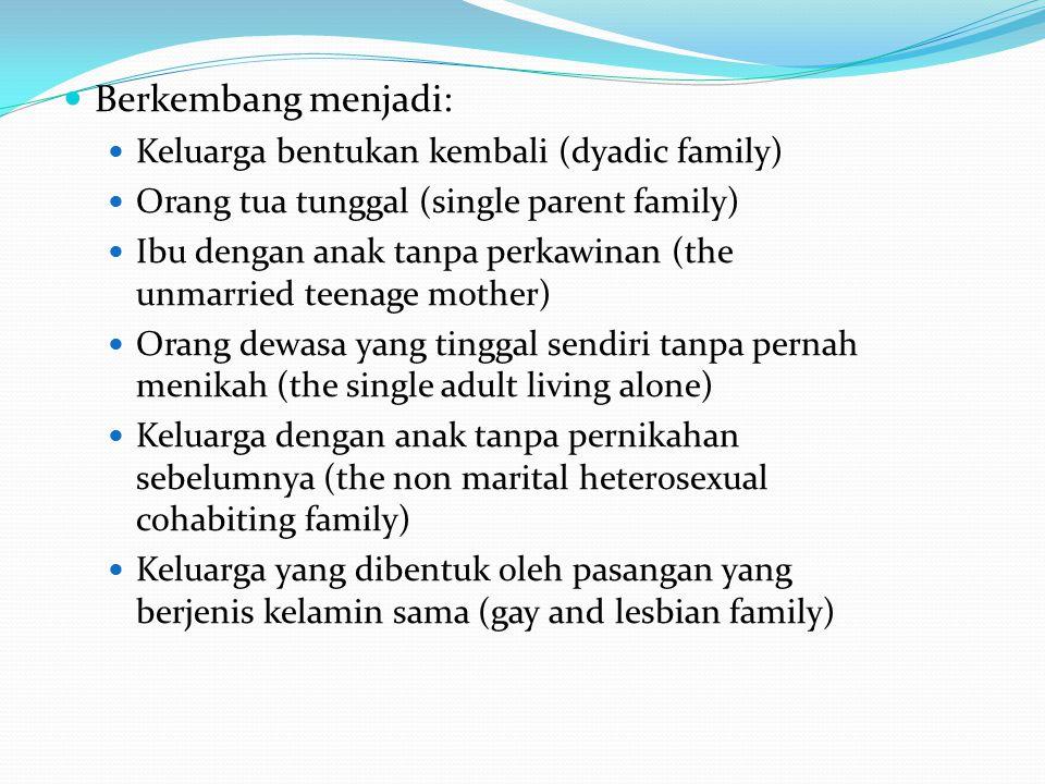 Berkembang menjadi: Keluarga bentukan kembali (dyadic family)