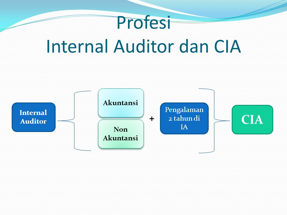 Profesi Internal Auditor dan CIA