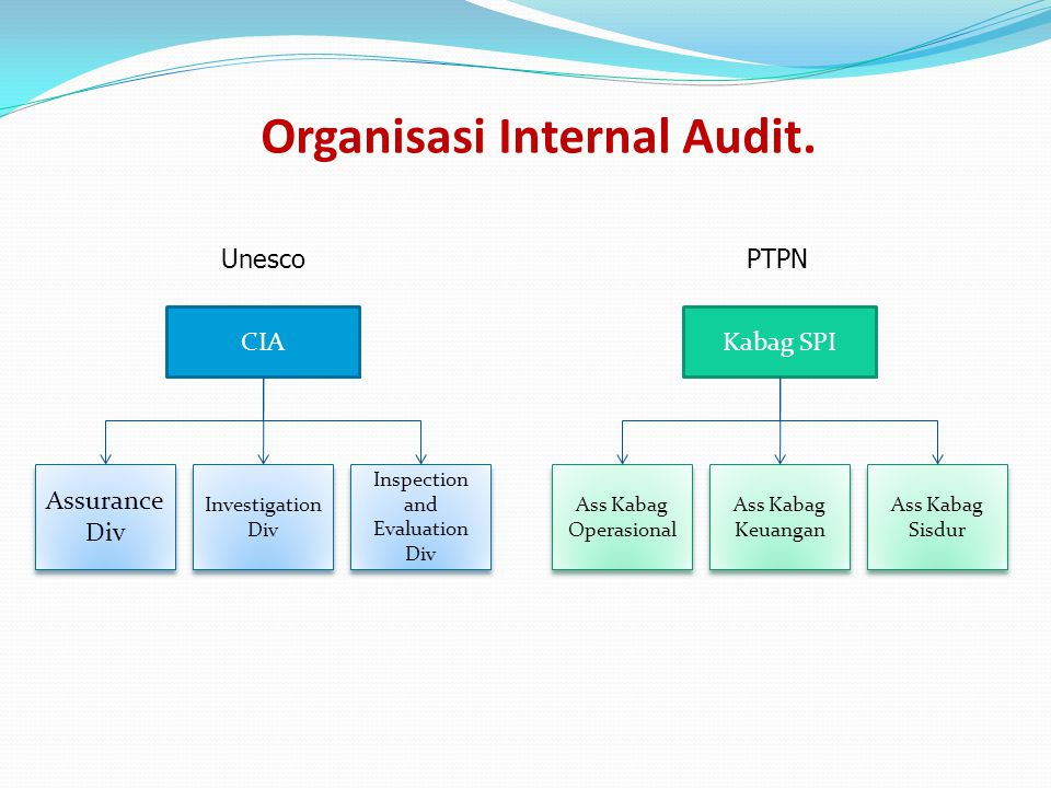 Organisasi Internal Audit.