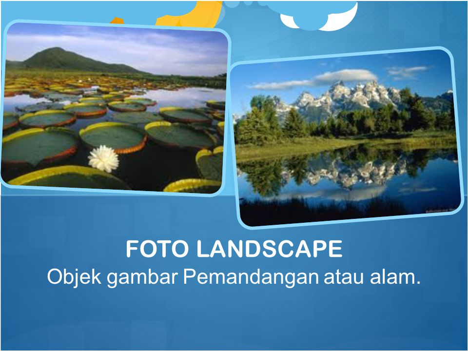 Objek gambar Pemandangan atau alam.