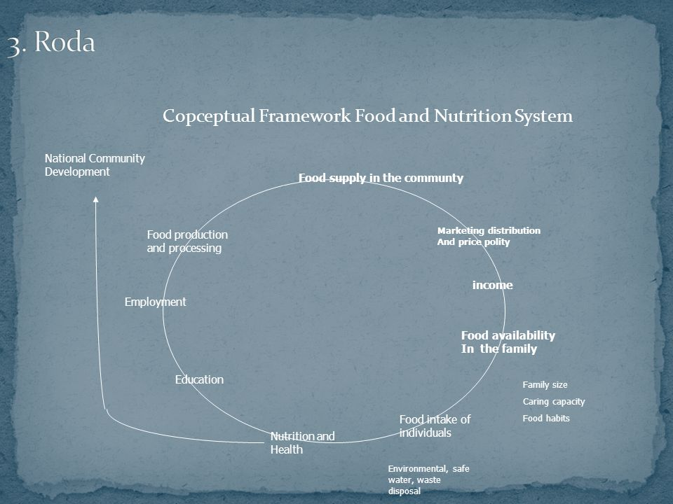 Copceptual Framework Food and Nutrition System