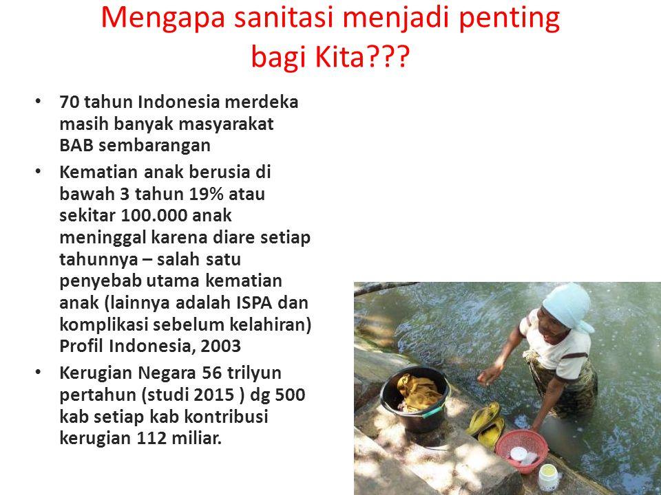 Mengapa sanitasi menjadi penting bagi Kita