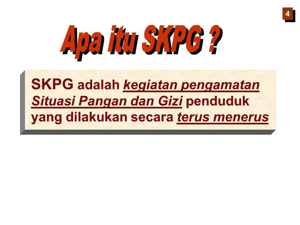 4 Apa itu SKPG .