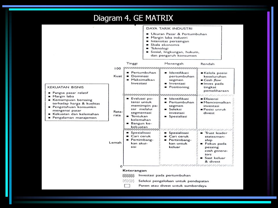 Diagram 4. GE MATRIX