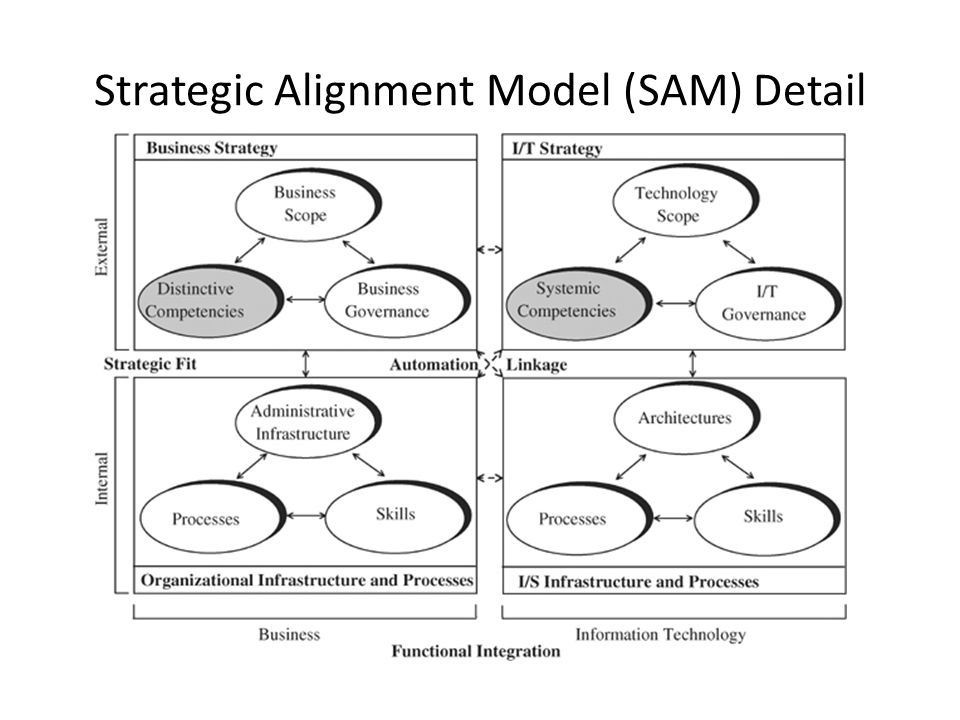 Strategic Alignment Model (SAM) Detail