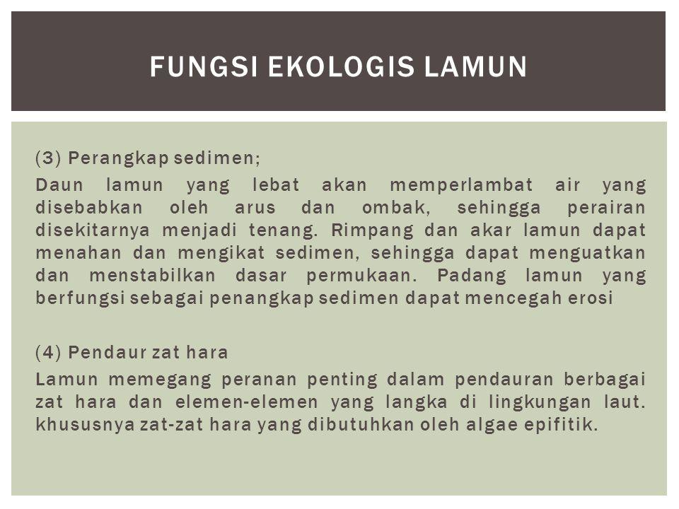 Fungsi ekologis lamun