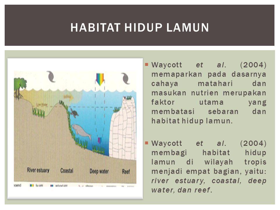 Habitat hidup lamun