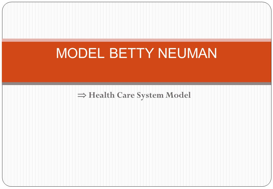  Health Care System Model