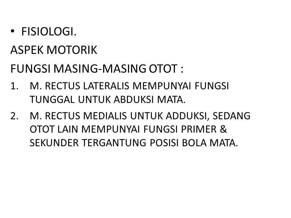 FUNGSI MASING-MASING OTOT :