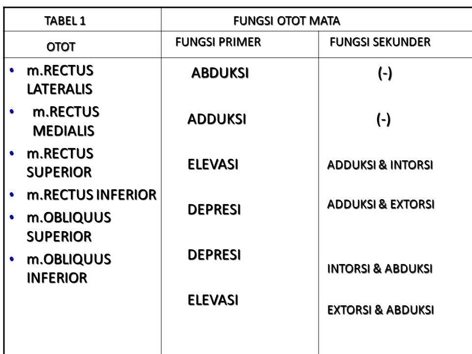 OTOT ABDUKSI (-) TABEL 1 FUNGSI OTOT MATA m.RECTUS LATERALIS