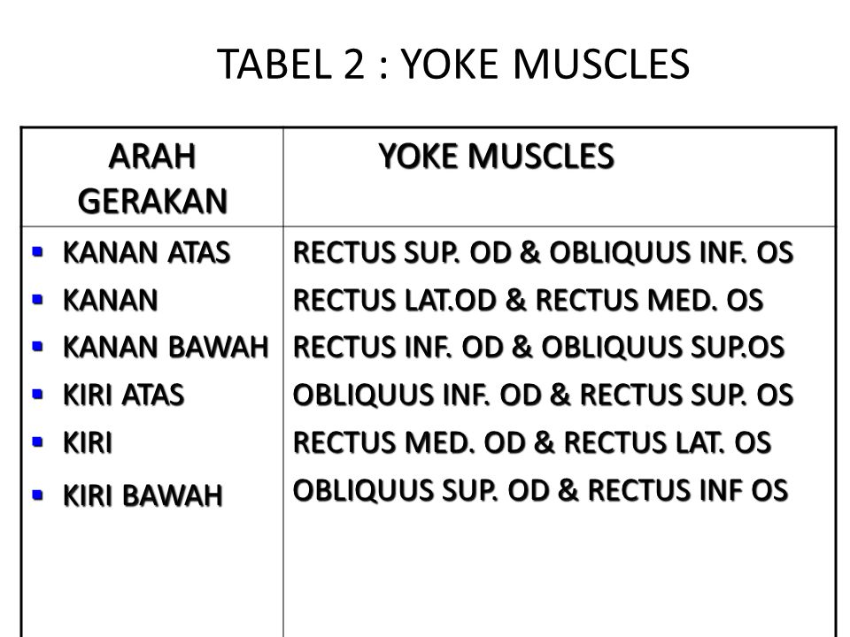 TABEL 2 : YOKE MUSCLES ARAH GERAKAN YOKE MUSCLES KANAN ATAS KANAN