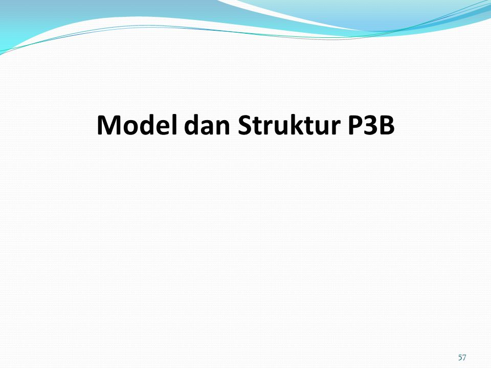 Model dan Struktur P3B