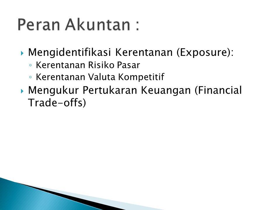 Peran Akuntan : Mengidentifikasi Kerentanan (Exposure):