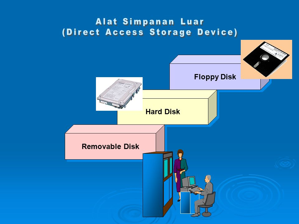 (Direct Access Storage Device)