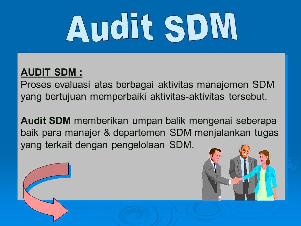 Audit SDM AUDIT SDM : Proses evaluasi atas berbagai aktivitas manajemen SDM. yang bertujuan memperbaiki aktivitas-aktivitas tersebut.