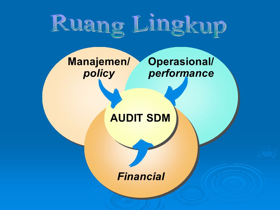 Manajemen/ policy Operasional/ performance Financial AUDIT SDM
