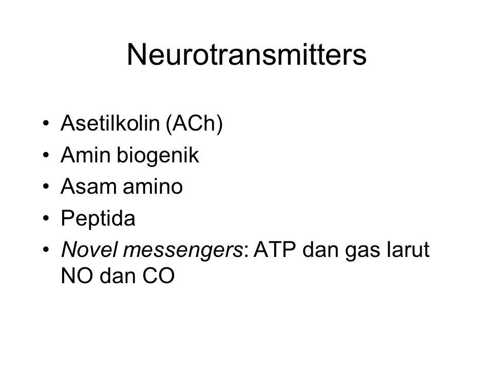 Neurotransmitters Asetilkolin (ACh) Amin biogenik Asam amino Peptida