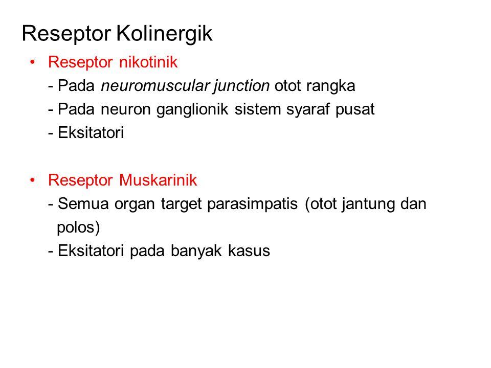 Reseptor Kolinergik Reseptor nikotinik