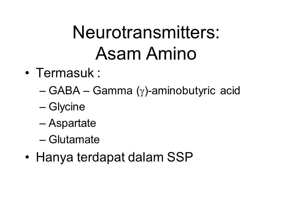 Neurotransmitters: Asam Amino