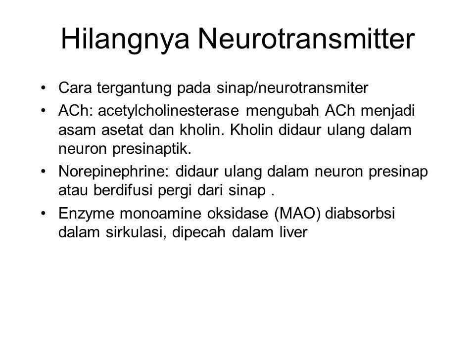 Hilangnya Neurotransmitter