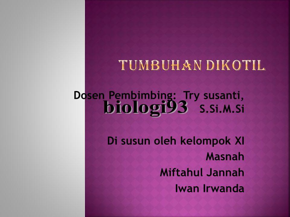 Tumbuhan dikotil biologi93 Dosen Pembimbing: Try susanti, S.Si.M.Si