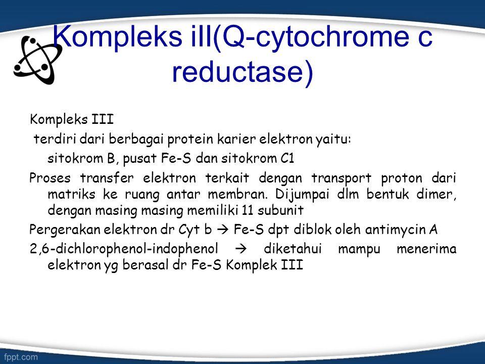 Kompleks iII(Q-cytochrome c reductase)