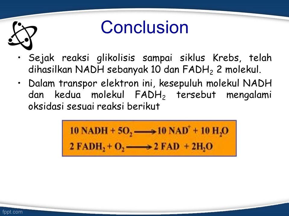 Conclusion Sejak reaksi glikolisis sampai siklus Krebs, telah dihasilkan NADH sebanyak 10 dan FADH2 2 molekul.