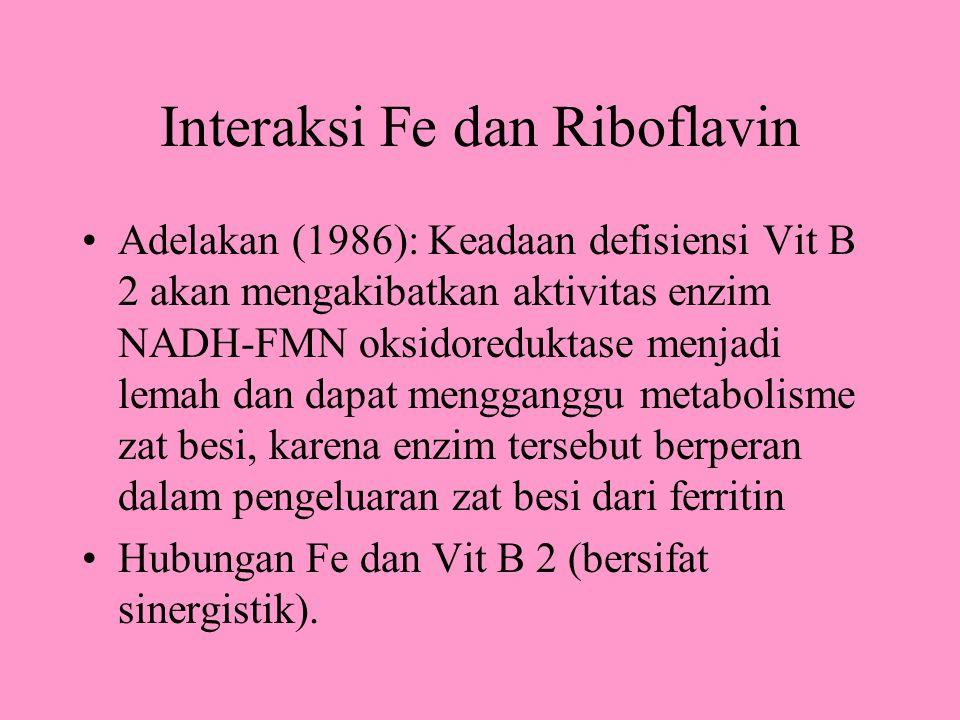 Interaksi Fe dan Riboflavin
