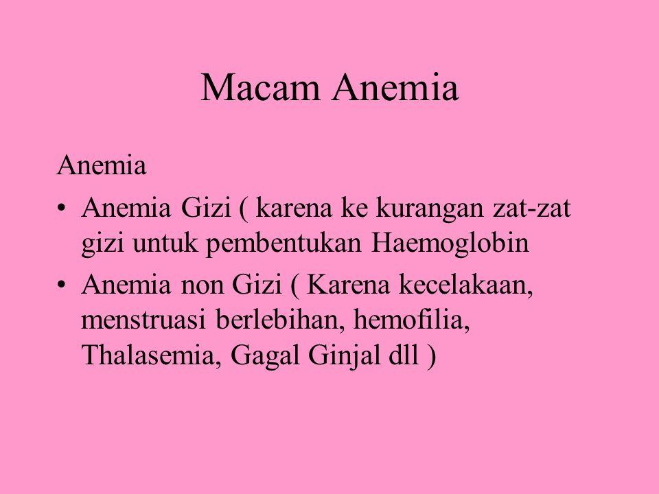 Macam Anemia Anemia. Anemia Gizi ( karena ke kurangan zat-zat gizi untuk pembentukan Haemoglobin.