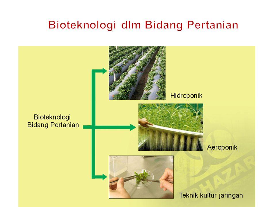 Bioteknologi dlm Bidang Pertanian