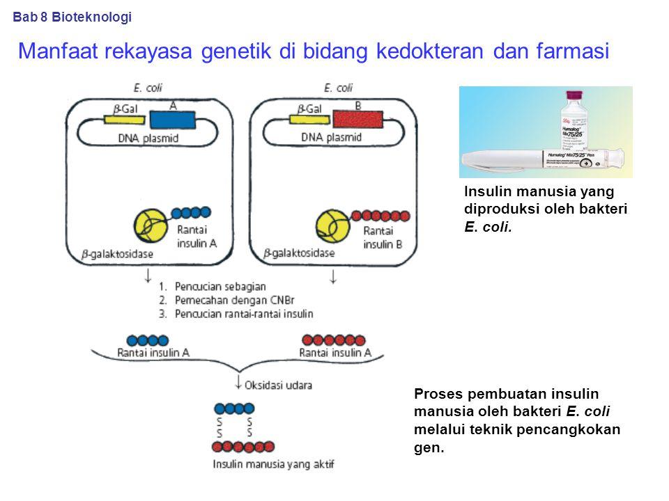 Manfaat rekayasa genetik di bidang kedokteran dan farmasi