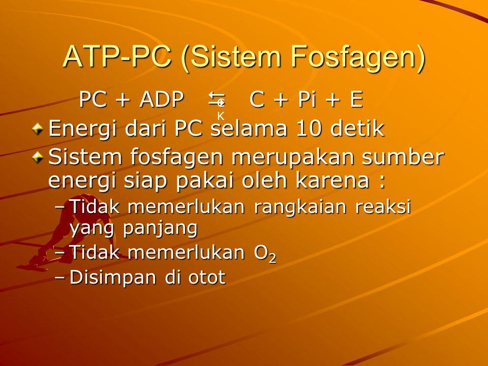 ATP-PC (Sistem Fosfagen)