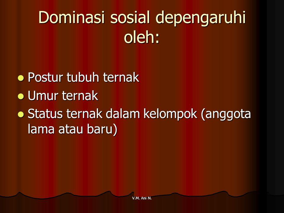 Dominasi sosial depengaruhi oleh: