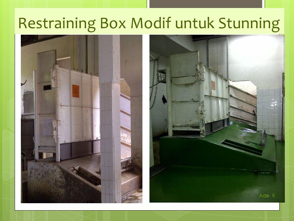 Restraining Box Modif untuk Stunning