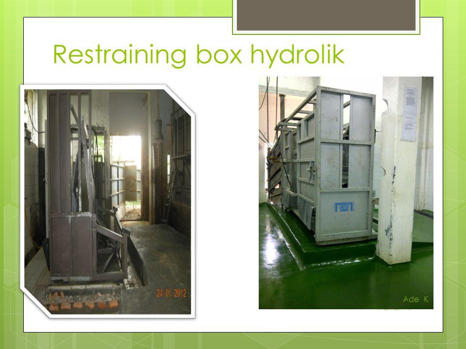 Restraining box hydrolik