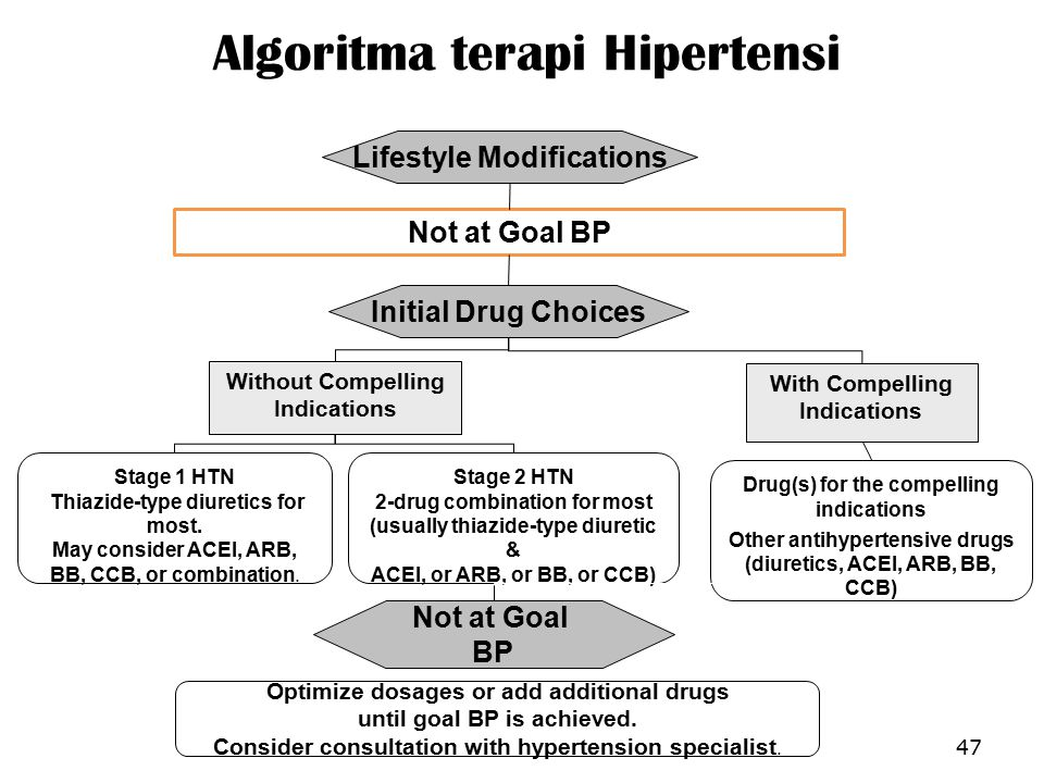 Algoritma terapi Hipertensi