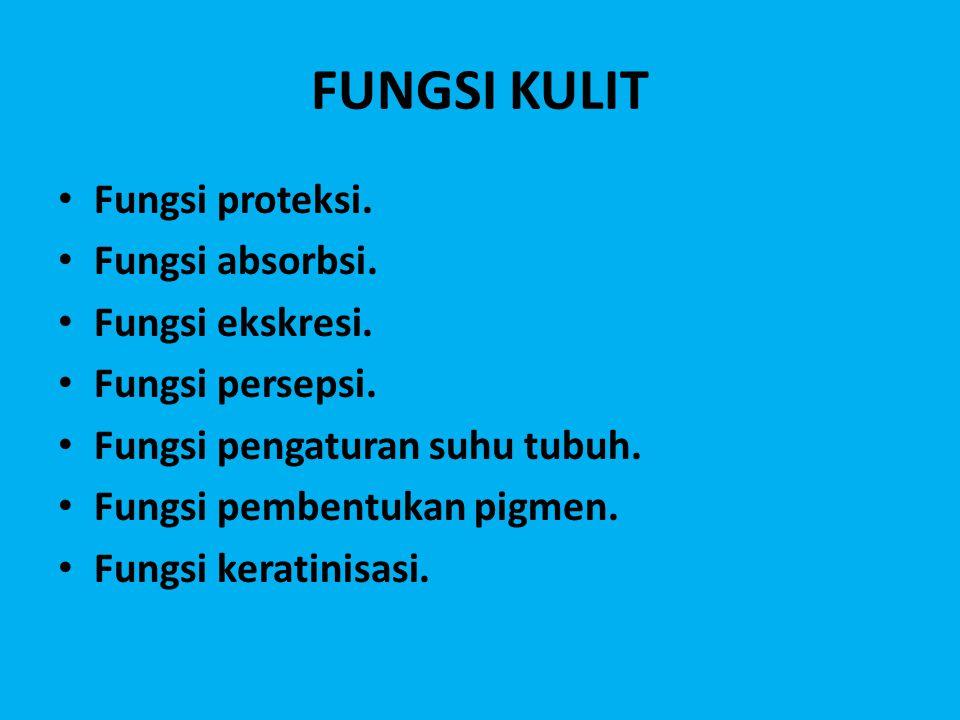 FUNGSI KULIT Fungsi proteksi. Fungsi absorbsi. Fungsi ekskresi.
