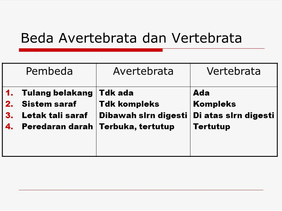 Beda Avertebrata dan Vertebrata