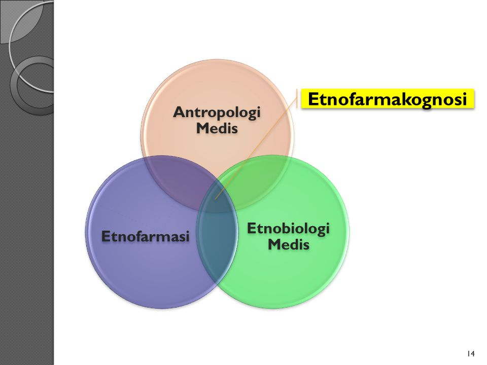 Antropologi Medis Etnobiologi Medis Etnofarmasi Etnofarmakognosi