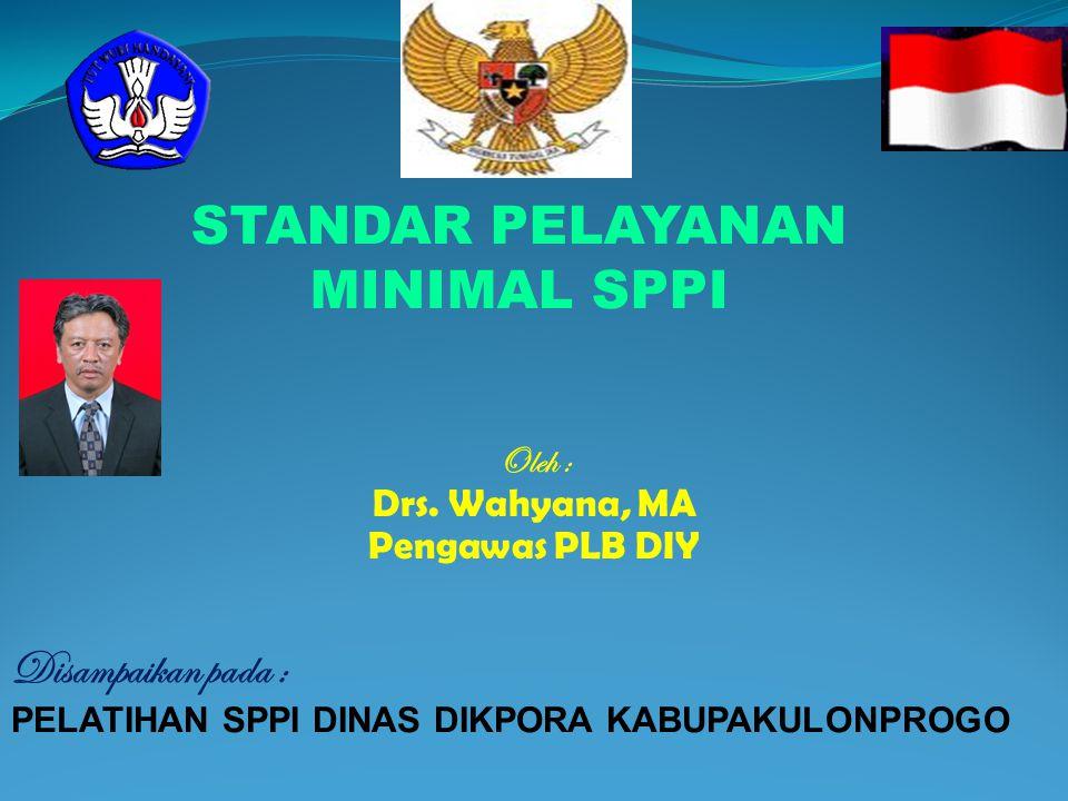 Oleh : Drs. Wahyana, MA Pengawas PLB DIY