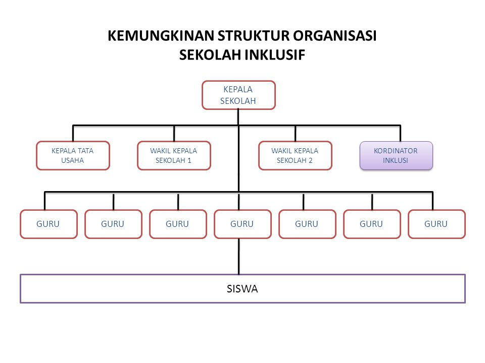 KEMUNGKINAN STRUKTUR ORGANISASI SEKOLAH INKLUSIF