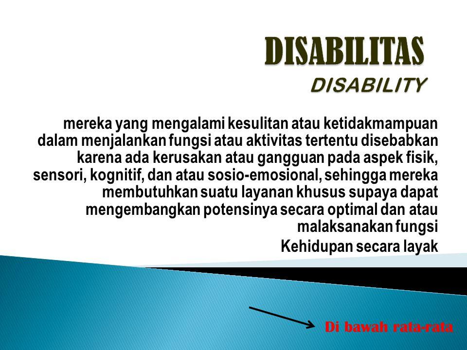 DISABILITAS DISABILITY